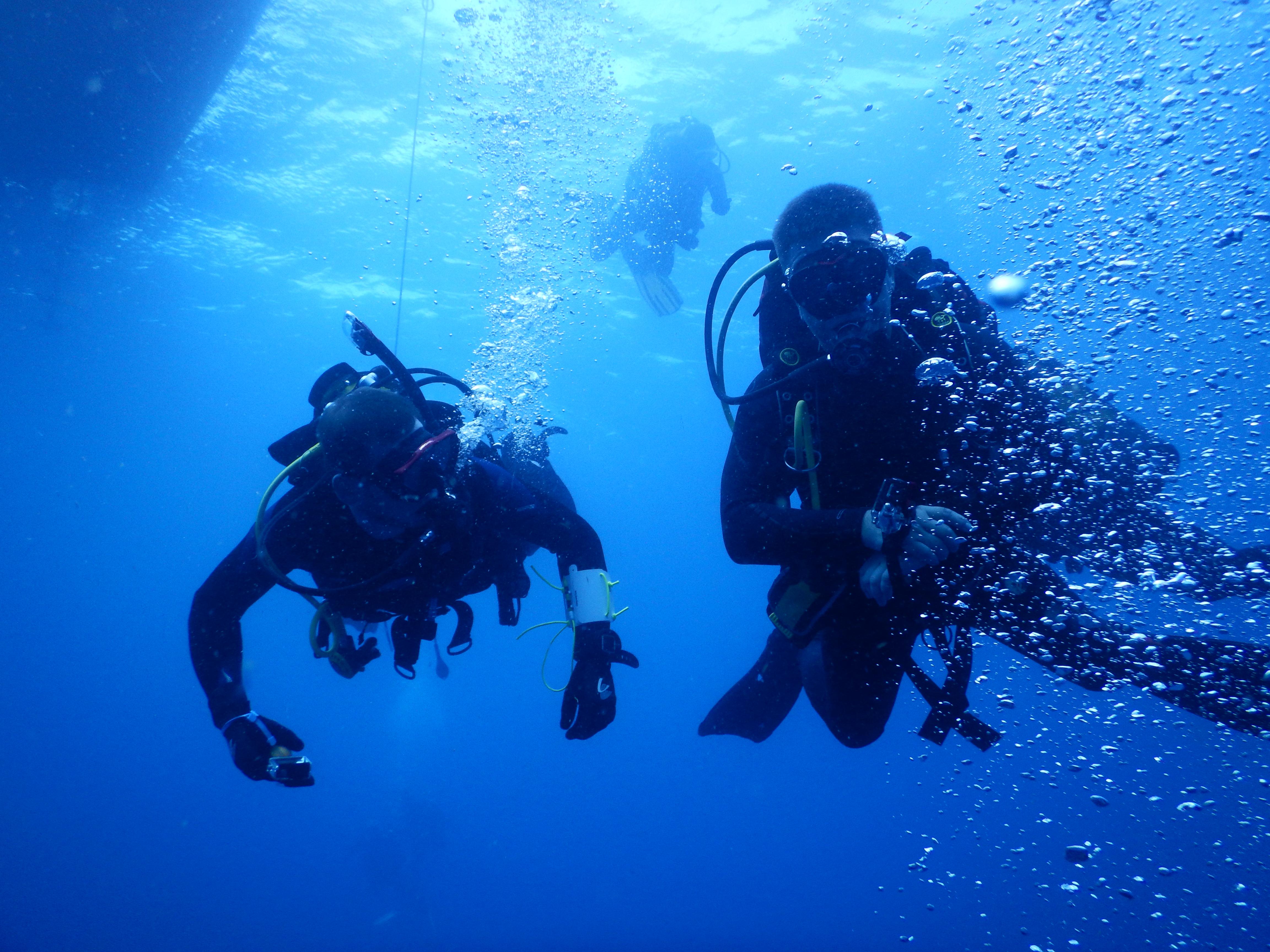 żeglowanie i nurkowanie nakatamaranie